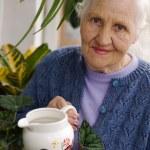 Elderly woman with plants — Stock Photo