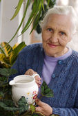 Elderly woman with plants — Stock Photo