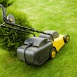 Lawnmower on the grass — Stok fotoğraf