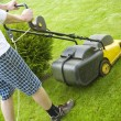 Foto Stock: Lawnmower on the grass