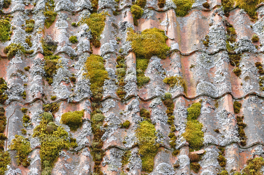 Closeup of an old tiles roof — Stock Photo #3172827