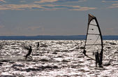 Windsurfers — Stock Photo