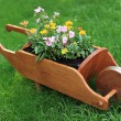 Wheelbarrow in gradne — Stock Photo