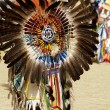 Stock Photo: Powwow dancers 10