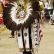 Powwow dancers 10 - Stock Photo