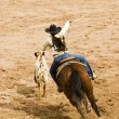 Breakaway roping — Stock Photo #2739480