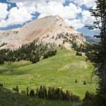 Beartooth Butte — Stock Photo #2910638