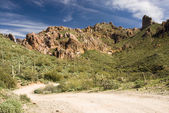 Desert wilderness — Stock Photo