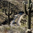 Stock Photo: Desert Road