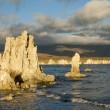 Mono Lake — Stock Photo #3085498