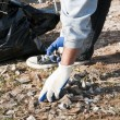 Stock Photo: Community park cleanup