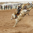 Stock Photo: Saddle bronc 1
