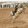 Saddle bronc 1 — Stock Photo #3085712