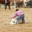 Stock Photo: Steer Wrestling 2