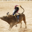 Bull Riding 2 — Stock Photo