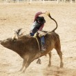Bull Riding 2 - Stock Photo