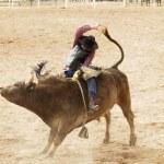 Bull Riding 2 — Stock Photo #3085718