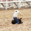Calf roping — Stock Photo #3085741