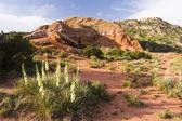 Palo duro canyon — Foto Stock