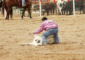 Steer Wrestling 2 — Stock Photo