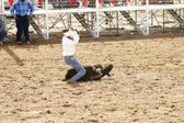Calf roping 2 — Stock Photo