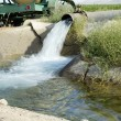 Irrigation ditch 1 — Stock Photo
