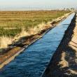 Stock Photo: Irrigation canal