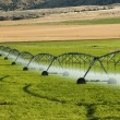 Stock Photo: Irrigation system