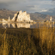 Mono Lake — Stock Photo #3147841