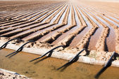 Irrigation canal & siphon tubes — Stock Photo