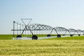 Center pivot irrigation system — Stock Photo