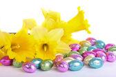 жёлтый нарцисс цветы изолированные пасхальные яйца — Стоковое фото