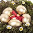 Golden easter eggs in bird nest — Stock Photo