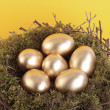 Stock Photo: Golden eggs in bird nest over yellow
