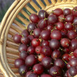 Red Gooseberries in basket - Stock Photo
