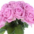 Bouquet of pink roses over white — Stock Photo