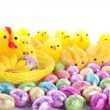 Easter chicks and bunnies background - Stock Photo