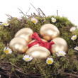 Gold easter eggs in bird nest isolated over whit - Stock Photo