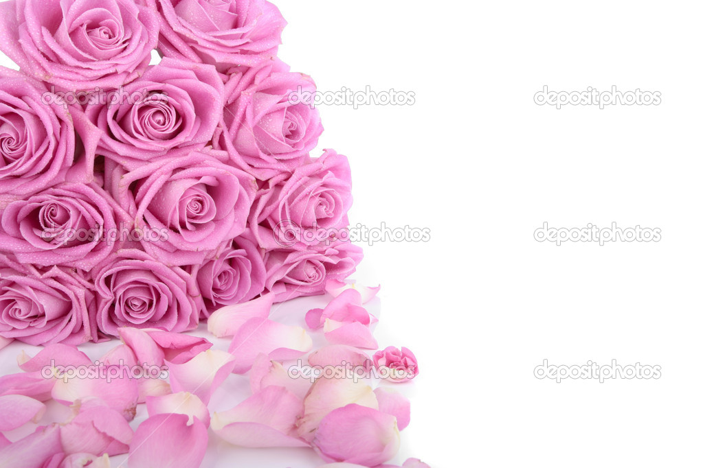 Bouquet of pink roses over white background — Stock Photo #3327261