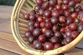 Red Gooseberries closeup — Stock Photo