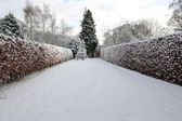 Garden covered in deep snow in winter — Stock Photo