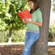 Teenage girl reading a book - Stock Photo