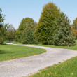 Stock Photo: Walking path in park