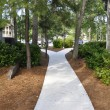 Stock Photo: Shaded concrete sidewalk