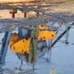 Oil extracting unit — Stock Photo