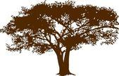 Albero nella savana — Vettoriale Stock