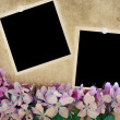 Royalty-Free Stock Photo: Floral Background with Blank Photos
