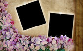 Floral Background with Blank Photos — Stock Photo