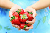 Woman Holding Strawberries — Stock Photo