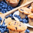 Blueberry Muffins — Stock Photo #3512941